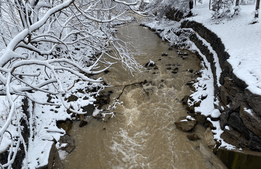 Forty Creek in December
